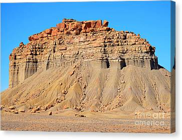 New Mexico Topography Canvas Print
