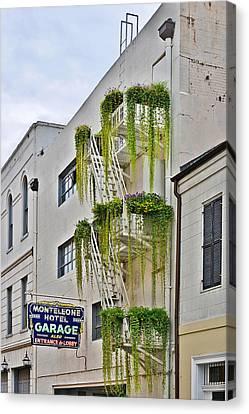 New Orleans Balcony Gardens Canvas Print