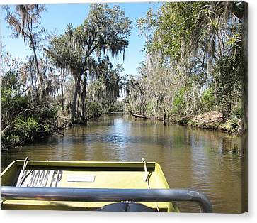 New Orleans - Swamp Boat Ride - 1212122 Canvas Print by DC Photographer
