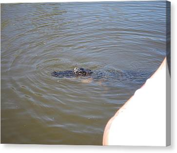 New Orleans - Swamp Boat Ride - 121277 Canvas Print by DC Photographer