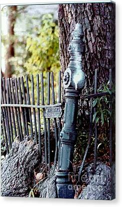 New Orleans Wrought Iron Roots Canvas Print by Michael Hoard
