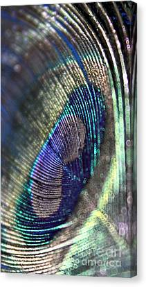 New Perspective Canvas Print