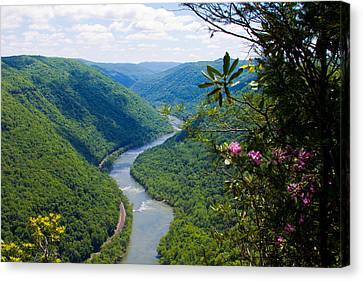 New River View Canvas Print