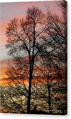 Canvas Print featuring the photograph New Years Sunset by Tannis  Baldwin