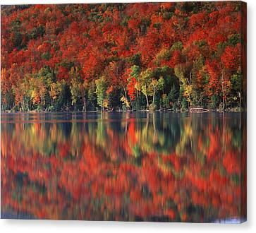 New York, Adirondack Mountains Canvas Print by Christopher Talbot Frank