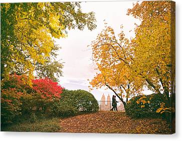 New York Autumn - Central Park Fall Foliage Canvas Print by Vivienne Gucwa