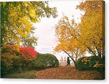 New York Autumn - Central Park Fall Foliage Canvas Print