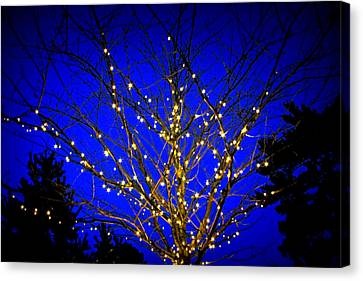 Canvas Print featuring the photograph New York Botanical Garden Holiday Tree by Aurelio Zucco