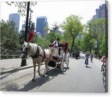 New York City - Central Park - 12124 Canvas Print