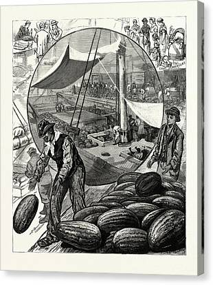 New York Incidents Of The Watermelon Trade In The Metropolis Canvas Print