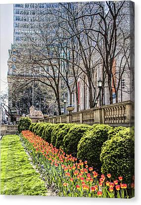 Bryant Park And Public Library Canvas Print - New York Public Library by Nancy Wilt