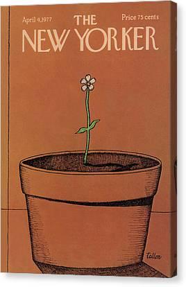 Skinny Canvas Print - New Yorker April 4th, 1977 by Robert Tallon