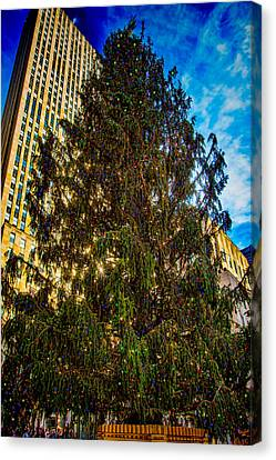Canvas Print featuring the photograph New York's Holiday Tree by Chris Lord