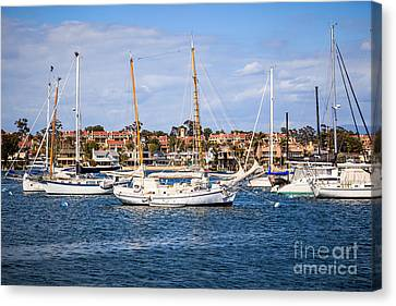 Newport Harbor Boats In Orange County California Canvas Print by Paul Velgos