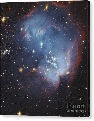 Ngc 602, Starforming Complex Canvas Print by Robert Gendler
