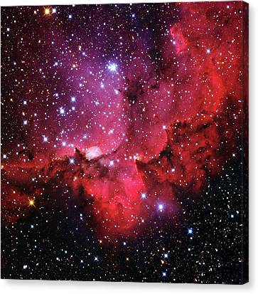 Ngc 7380 Star Cluster Canvas Print