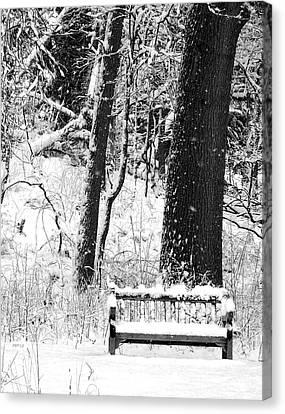 Nichols Arboretum Canvas Print