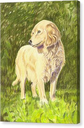 Nicky Canvas Print by Ruth Seal