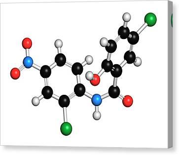 Niclosamide Tapeworm Drug Molecule Canvas Print by Molekuul