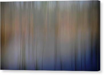 Night #8 Canvas Print