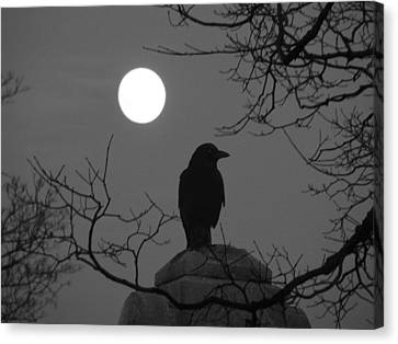 Night Crow And The Full Moon Canvas Print
