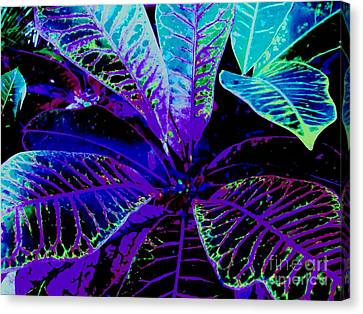 Night Falls On The Croton Canvas Print by Ann Johndro-Collins