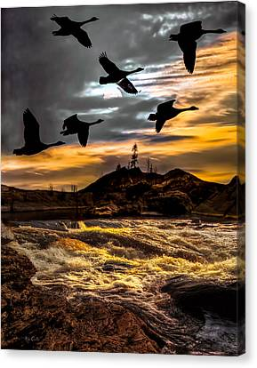 Night Flight Canvas Print by Bob Orsillo