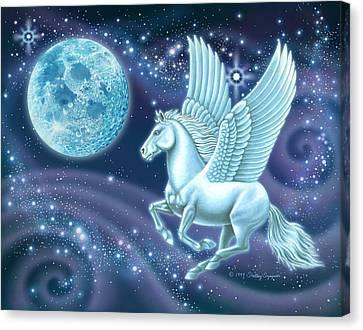 Night Flight Canvas Print by Shelley Szajner