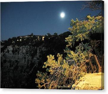 Canvas Print featuring the photograph Night Glow by Sylvia Thornton