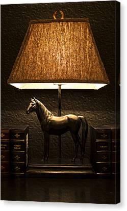 Night Lamp Canvas Print by Radoslav Nedelchev
