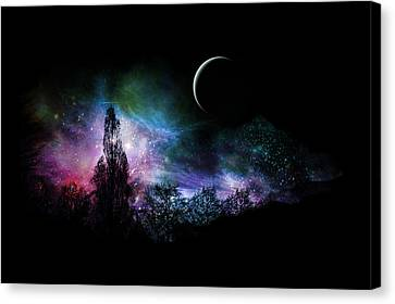 Night Landscape Canvas Print by Bruce Rolff