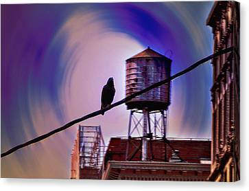 Night Life Canvas Print by Bill Cannon