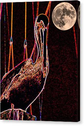 Canvas Print featuring the photograph Night Light by Robert McCubbin