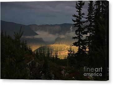 Night On Cougar Mountain Series Vi Canvas Print by Amanda Holmes Tzafrir