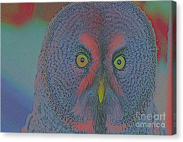 Night Owl Canvas Print by Celestial Images