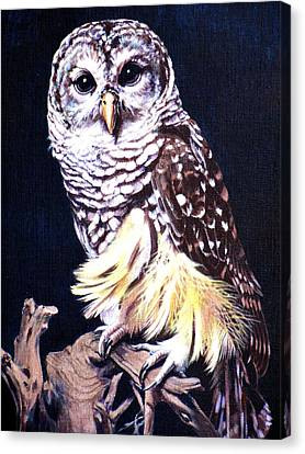 Night Owl Canvas Print by Vivien Rhyan