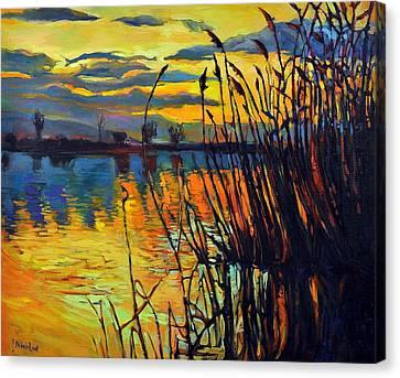 Night Scenery Canvas Print by Ivailo Nikolov