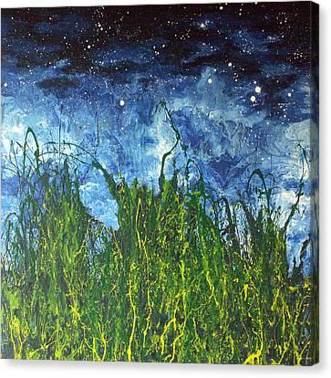 Night Sky 2007 Canvas Print