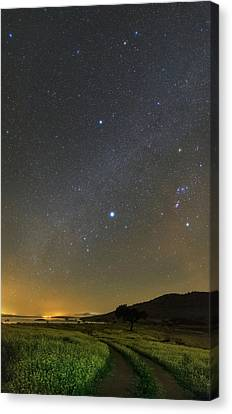 Night Sky In Dark Sky Reserve Canvas Print