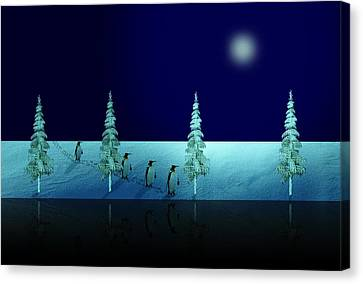 Night Walk Of The Penguins 2.5 Canvas Print