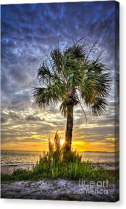 Nightfall Canvas Print by Marvin Spates