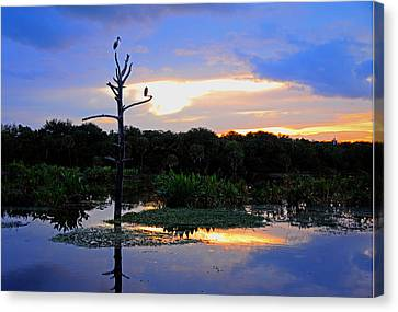 Nightfall Reverie Canvas Print by Allan Einhorn