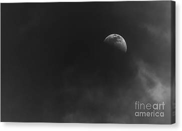 Nightlight Canvas Print by Marvin Spates
