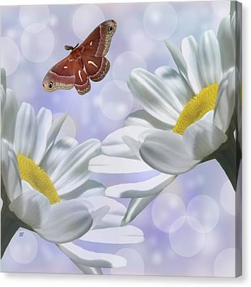Nights In White Silk 2 Canvas Print by Barbara St Jean