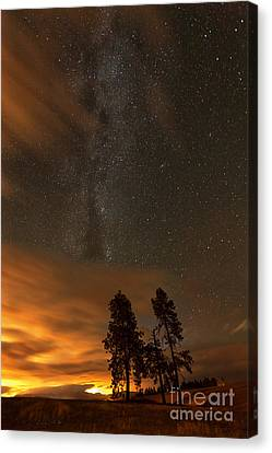 Nighttime Aglow Canvas Print by Beve Brown-Clark Photography