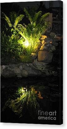 Nighttime Reflection Canvas Print by Debbie Finley