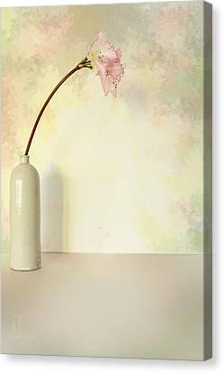 Nina Canvas Print by Elaine Teague