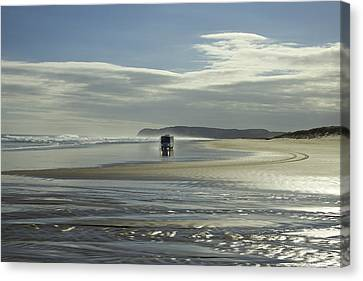 Ninety Mile Beach New Zealand Canvas Print by Venetia Featherstone-Witty