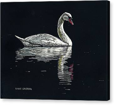 Nino's Swan Canvas Print by Robert Goudreau