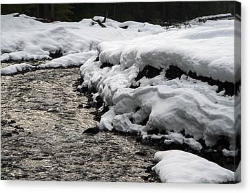 Canvas Print featuring the photograph Nisqually River Mount Rainier National Park by Bob Noble Photography